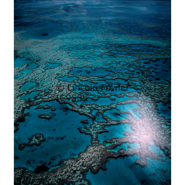 Great Barrier Reef Queensland Australia