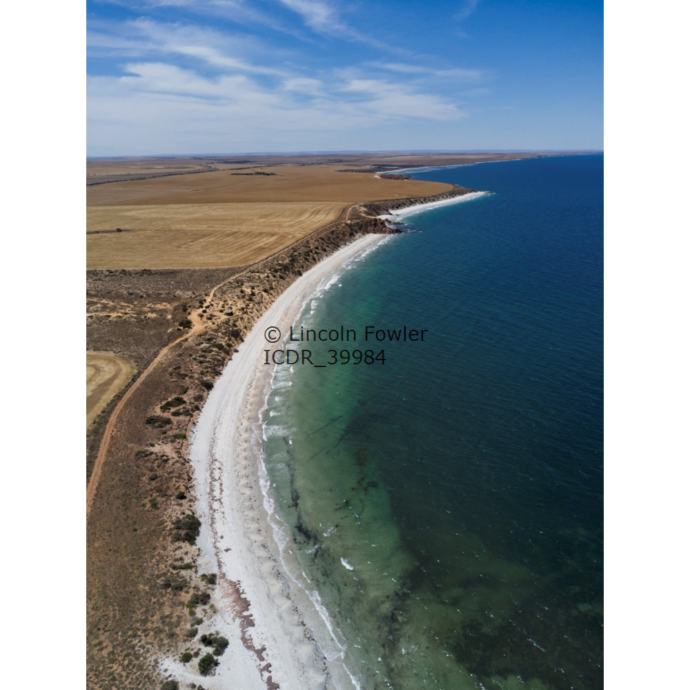 Aerial of wheat fields on the scenic coast of South Australia