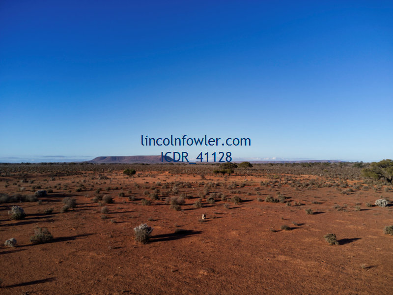 Outback landscape in South Australia