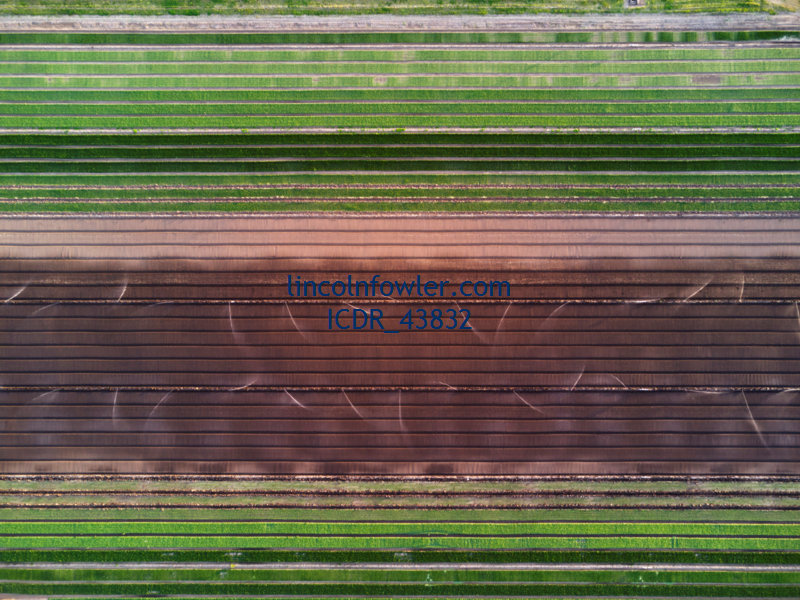 Aerial of a salad lettuce farm Queensland Australia