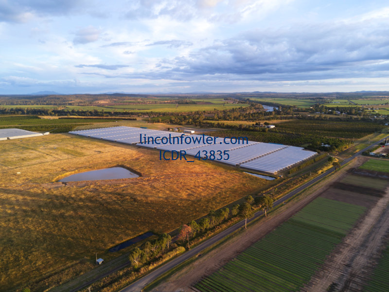 Aerial of a hydroponic blueberry farm Queensland Australia
