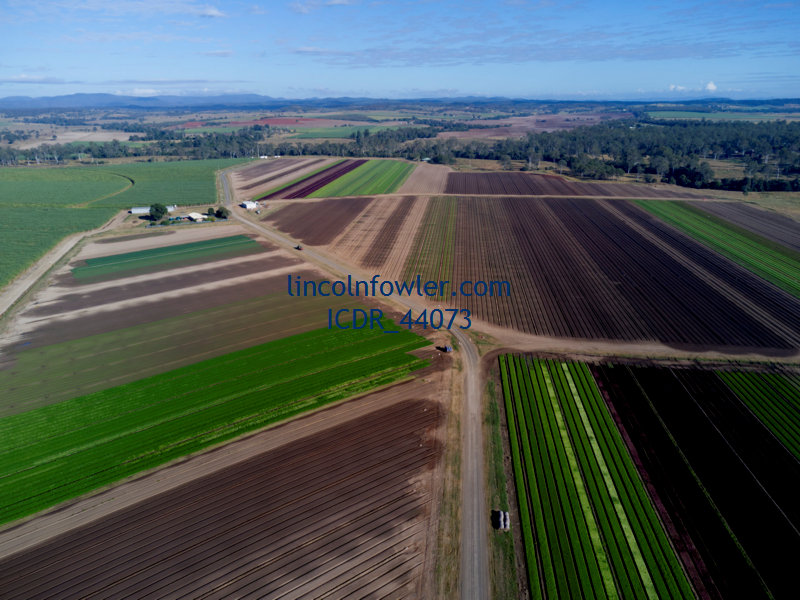 Aerial of commercial salad farm Wallaville Queensland Australia