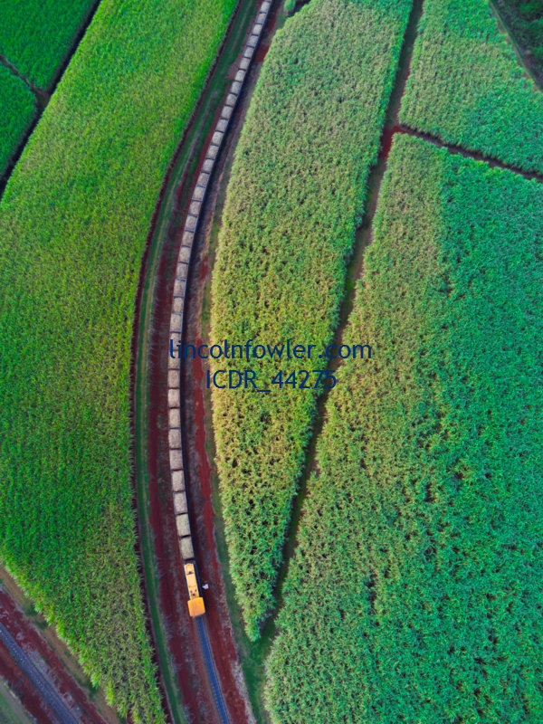 Aerial Sugarcane Train hauling sugar cane Queensland Australia