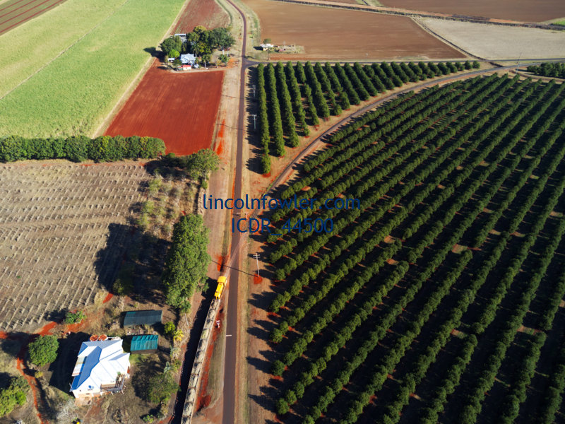 Aerial of sugar cane train Childers Queensland Australia