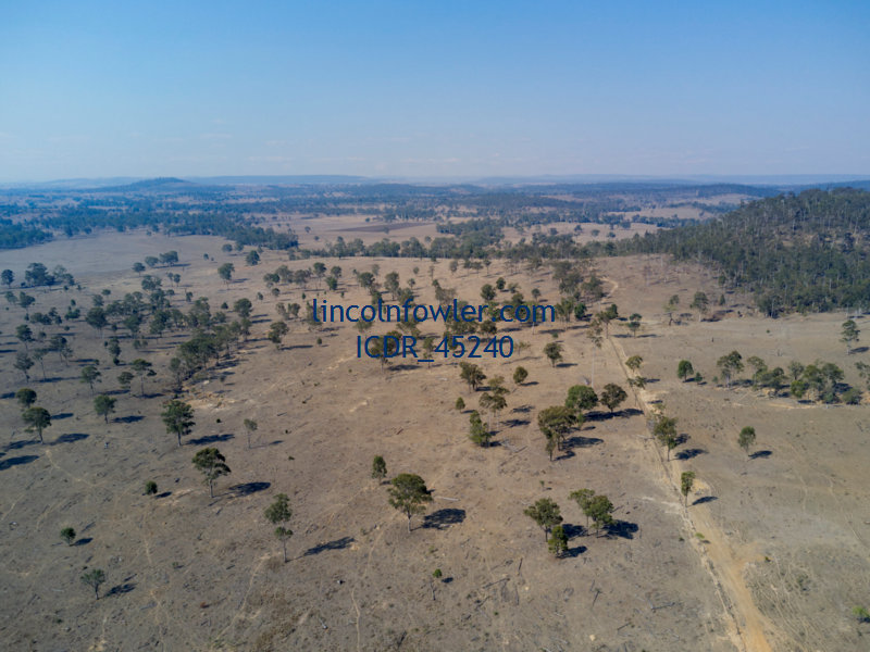 Drought affected landscape Abercorn Queensland Australia